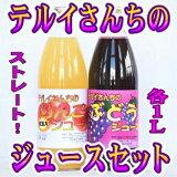 【ふるさと納税】テルイさんちのジュースセット(ストレート)各1Lりんごジュース&ぶどうジュース