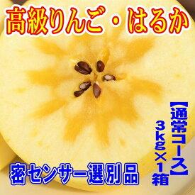 【ふるさと納税】高級りんご「はるか」【蜜センサー選別品】〜こんなりんごがあったのか!〜 約3kg