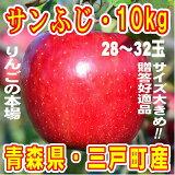 【ふるさと納税】三戸りんごサンふじ約10kg
