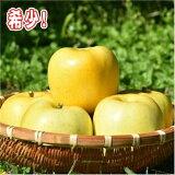 【ふるさと納税】希少!りんご「もりのかがやき」12〜16玉(約5kg)【H30.10月中旬発送開始】青森りんご・三戸町産→→2018年産の受付は終了しました。