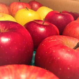 【ふるさと納税】【青森ごのへ産】 もぎたてりんご 5kg(16〜20玉)【1033632】