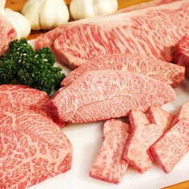 【ふるさと納税】幻の田子牛逸品セットA/牛肉1.1kgニンニク・特製タレ付 【サーロイン・お肉・牛肉・薬味】
