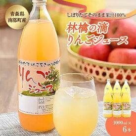 【ふるさと納税】林檎の滴(りんごジュース) 6本セット F21U-006