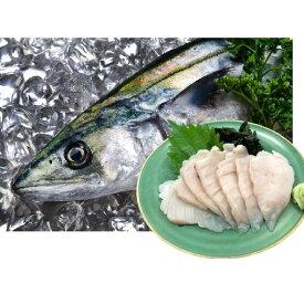 【ふるさと納税】三陸産 さわらのお刺身500g(約50g×10パック) 【魚貝類・加工食品・さわらのお刺身・さわら】