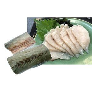 【ふるさと納税】三陸産 刺身用・さわら1.2kg(柵・骨無し・スキンレス) 【魚介類・サワラ】