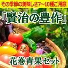 【ふるさと納税】賢治の豊作花巻産旬野菜セット7〜10種お届け