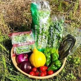 【ふるさと納税】花巻産 旬野菜セット7〜10種「賢治の豊作」