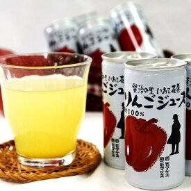 【ふるさと納税】花巻産 りんごジュース果汁100%(195ml×30本) ギフト