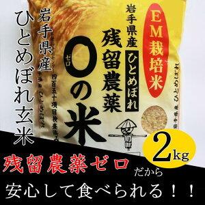 農薬アレルギーの方でも安心!「残留農薬0の米」玄米ひとめぼれおためし2kg《新米予約受付中》