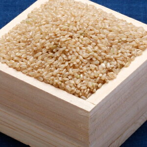 【ふるさと納税】こだわり農家の蔵出し玄米ひとめぼれ30kg Aクラス1等米