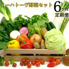 【ふるさと納税】《定期便6ヶ月コース》イーハトーヴ野菜セット