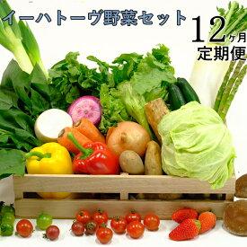 【ふるさと納税】《定期便12ヶ月コース》イーハトーヴ野菜セット