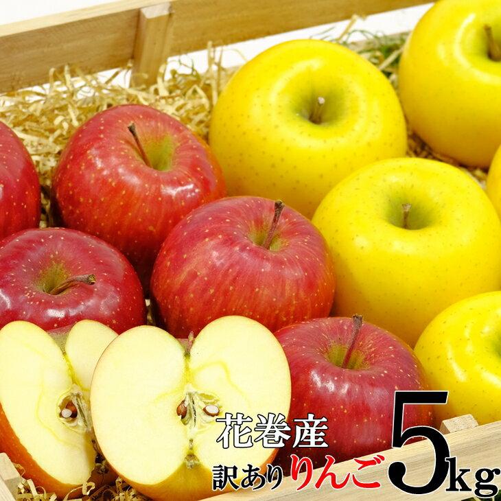 【ふるさと納税】岩手県花巻産 イーハトーヴ訳ありりんご5kgセット