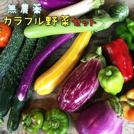 【ふるさと納税】無農薬 カラフル野菜セット ひばり農園《8月より順次発送予定/予約受付中》