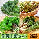 【ふるさと納税】花巻山菜400gセット《3種以上詰合せ》