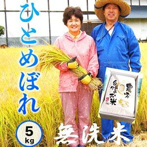 【ふるさと納税】減農薬栽培 岩手花巻産ひとめぼれ無洗米5kg(令和元年産新米)