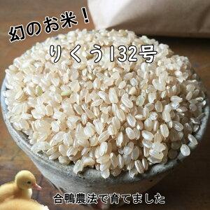 【ふるさと納税】無農薬 合鴨農法で育てたひばり農園 玄米 5kg りくう132号