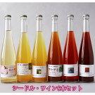 【ふるさと納税】酸味のきいたシードル・ワイン(500ml)6本セット