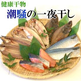 【ふるさと納税】F008 【健康干物】潮騒の一夜干しセット