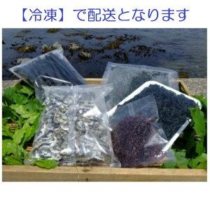 【ふるさと納税】C011 栄養満点!三陸の乾燥海藻セット