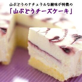 【ふるさと納税】岩手・山ふどうの里から「山ぶどうチーズケーキ」