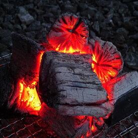 【ふるさと納税】【火つき・火力・火持ちよしの国産高級木炭】岩手切炭(GI)6kg×2個 なら堅一級