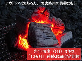 【ふるさと納税】【定期便】アウトドア・BBQ大好き!12ヵ月連続でこだわり木炭をお届け定期便