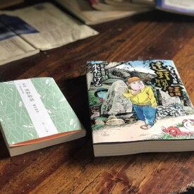 【ふるさと納税】『遠野物語』2冊セット