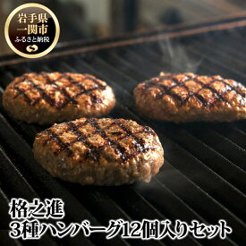 【ふるさと納税】ハンバーグ 無添加 冷凍 3種の格之進ハンバーグ 各2個合計6個×2箱 セット 黒毛和牛 白金豚