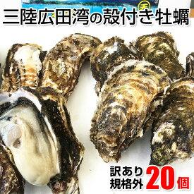 【ふるさと納税】《先行予約》訳あり 牡蠣 殻付き 20個(サイズ不揃い)規格外 冷蔵 カキ 海産物 三陸産 かき 生食 フライ カンカン BBQ 生牡蠣(2021年11月より発送予定)
