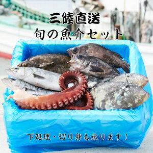【ふるさと納税】海産物 魚介類 詰め合わせ セット《お試し》三陸 海の恵み 鮮魚 下処理 直送 海藻 刺身 切り身 魚 さんま タコ