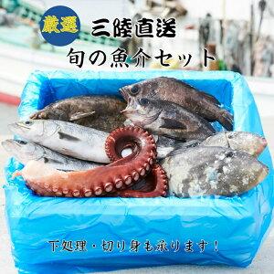 【ふるさと納税】 海産物 ≪厳選≫三陸 海の恵み 魚介類 詰め合わせ セット 鮮魚 下処理可 直送 刺身 切り身