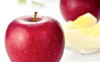 【ふるさと納税】江刺りんごジュースりんごの滴(パウチタイプ)