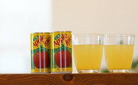 【ふるさと納税】江刺りんごジュース(195ml×30缶) 江刺産ジョナゴールド使用 ストレート果汁100%[A013]