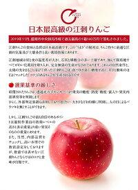 【ふるさと納税】江刺りんごジュースりんごの滴(パウチタイプ)195ml×24個ストレート果汁100%[A049]