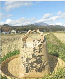 【ふるさと納税】農薬・化学肥料不使用!合鴨農法の武田家のお米 銀河のしずく(白米)20kg 【令和2年産米】