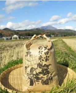 【ふるさと納税】農薬・化学肥料不使用!合鴨農法の武田家のお米 銀河のしずく(玄米)10kg 【令和2年産米】