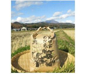 【ふるさと納税】農薬・化学肥料不使用!合鴨農法の武田家のお米 銀河のしずく(玄米)5kg 【令和2年産米】