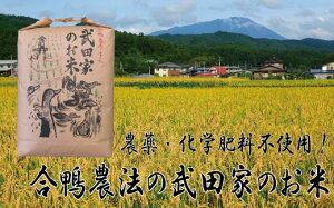 【ふるさと納税】農薬・化学肥料不使用!合鴨農法の武田家のお米 ひとめぼれ(玄米)20kg 【令和2年産米】