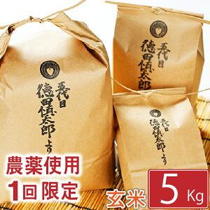 【ふるさと納税】 ◆農薬使用1回限定◆ あきたこまち 玄米 5kg 5キロ 岩手県 雫石町 米 産地直送 送料無料 AD-018