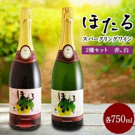 【ふるさと納税】スパークリングワイン赤白2本セット【1226088】