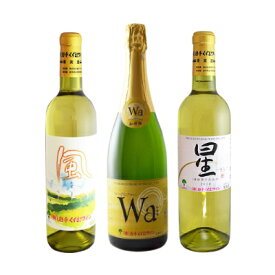 【ふるさと納税】辛口白ワイン3本セット【1227483】