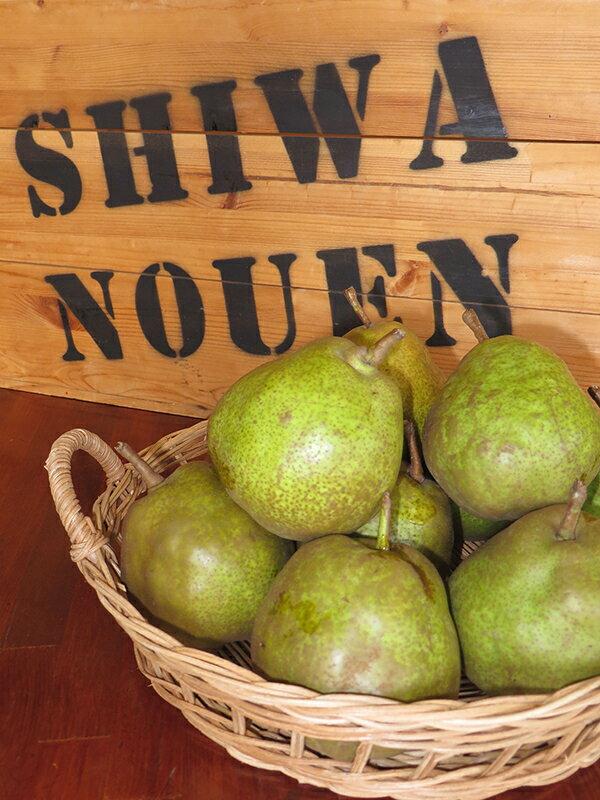 【ふるさと納税】No.009 紫波農園のラフランス(Lサイズ)約3kg
