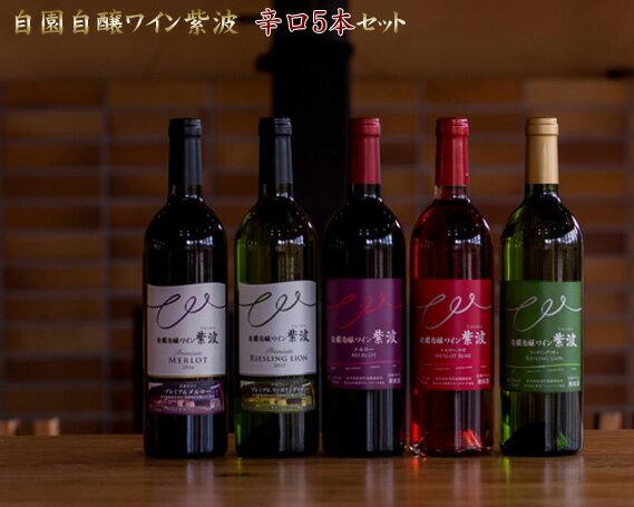 【ふるさと納税】No.052 自園自醸ワイン紫波 辛口5本セット