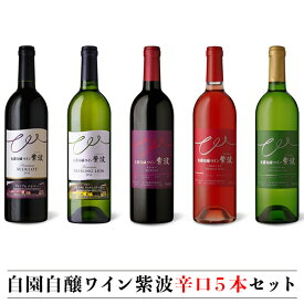 【ふるさと納税】ワイン 辛口 飲み比べセット 赤ワイン 白ワイン ロゼ ギフト 自園自醸ワイン紫波辛口5本セット