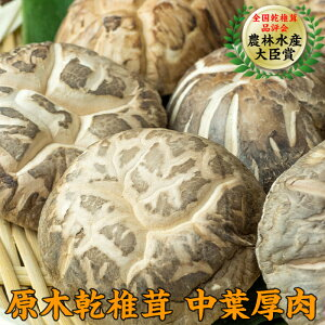 【ふるさと納税】三陸山田産 原木乾椎茸「中葉厚肉」 しいたけ