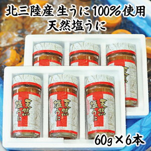 【ふるさと納税】【北三陸産生うに100%使用】天然塩うに 60g 6本