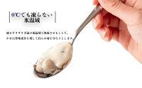 【ふるさと納税】氷温熟成かき生食用(冷凍)300g×5パック