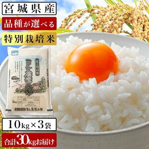 【ふるさと納税】【新米・2020年度産】ヨシ腐葉土米 特別栽培米 節減対象農薬の栽培期間不使用 精米30kg(10kg×3袋) ササニシキ、ひとめぼれ、つや姫、コシヒカリ 品種が選べる