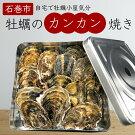 【ふるさと納税】牡蠣のカンカン焼き1.5kg